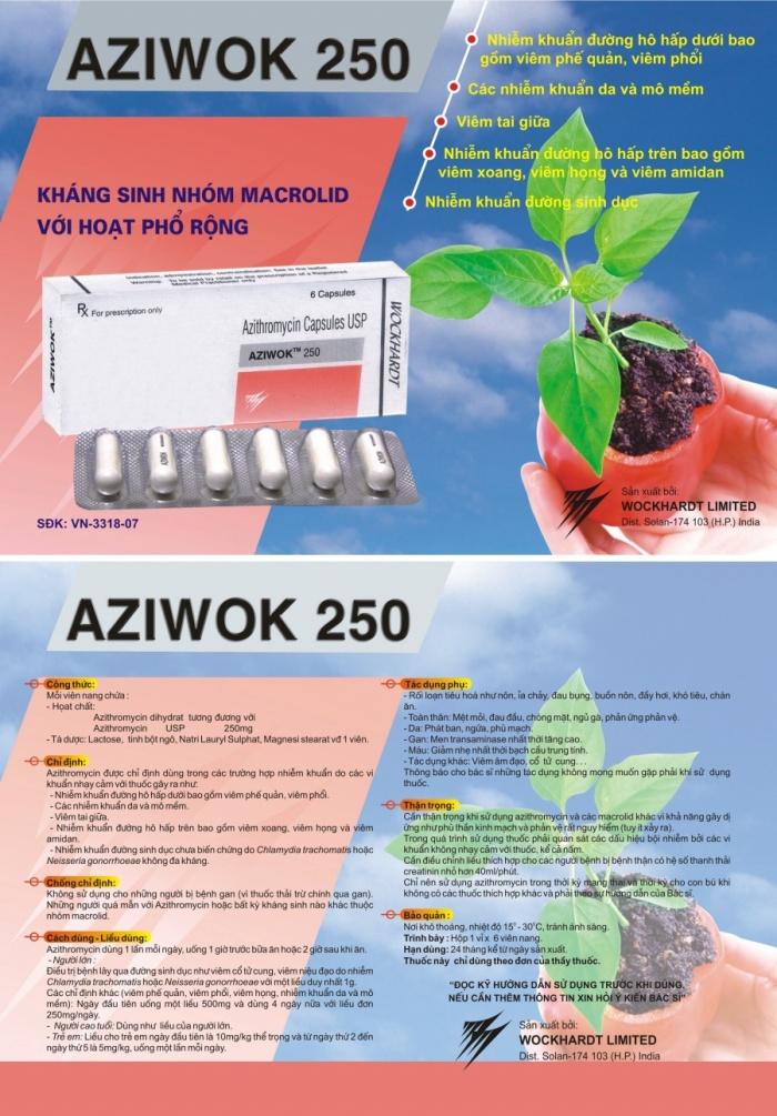 Tờ rơi AZIWOK 5